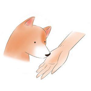 手心向上讓狗狗嗅聞 拷貝