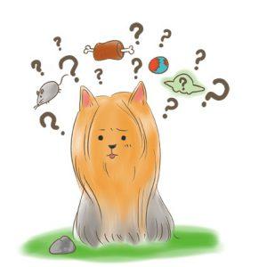 狗狗看著一塊石頭,頭腦出現很多問號和想法 拷貝