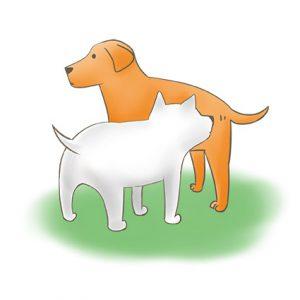 狗狗站著不動被別隻狗聞_改 拷貝
