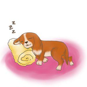 幼犬靠在毛巾捲旁睡覺 拷貝