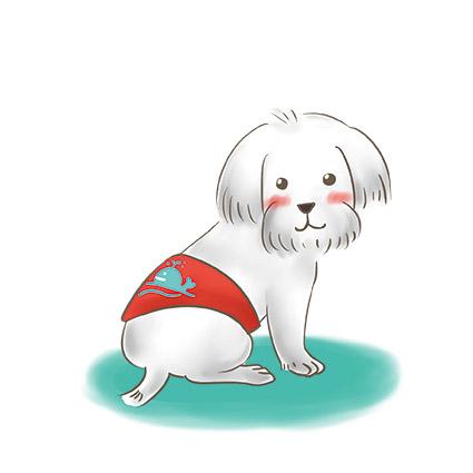 狗狗包著禮貌帶 拷貝