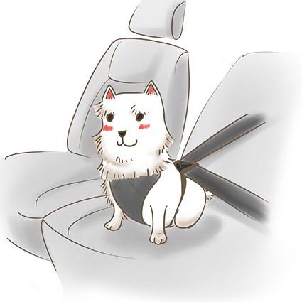 狗狗繫安全帶 拷貝