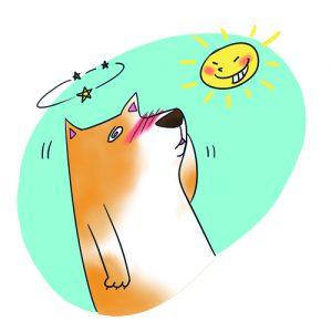 中暑的狗狗