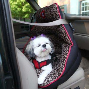 寵物安全座椅