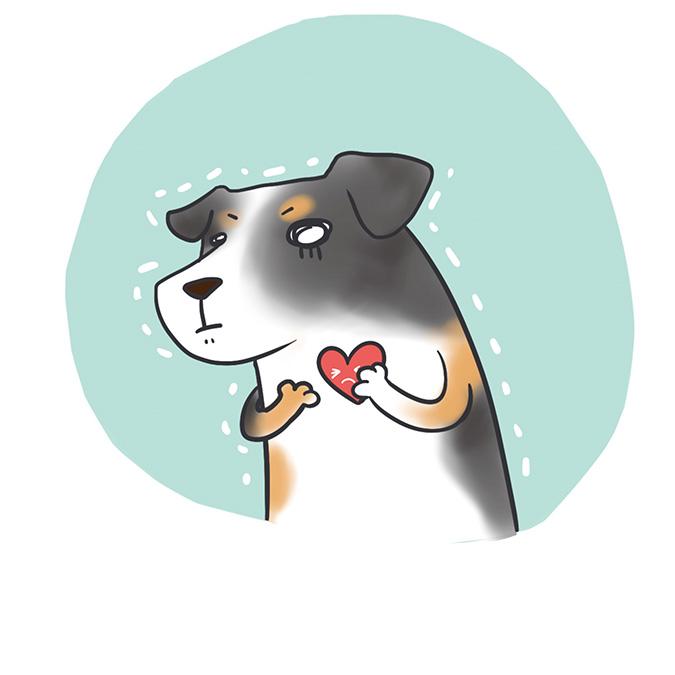 有心臟病的狗狗表情很緊張