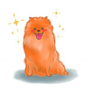 狗狗洗完澡閃閃動人毛髮亮麗
