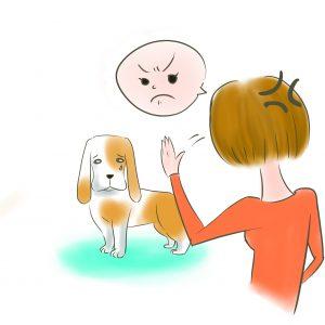 狗狗被打罵處罰