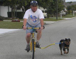 腳踏車牽引繩1-www.biketowleash.com