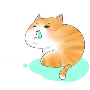 貓咪流鼻水