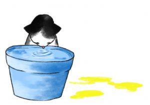 貓-多飲多尿