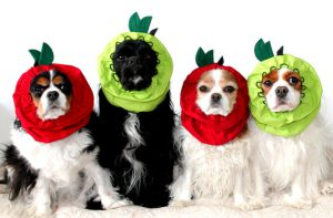 青/紅蘋果頭套