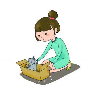 人撿到箱子裡面有貓