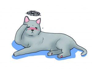 虛弱不舒服的貓咪
