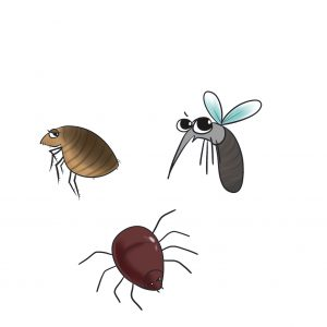 跳蚤、壁蝨、蚊子