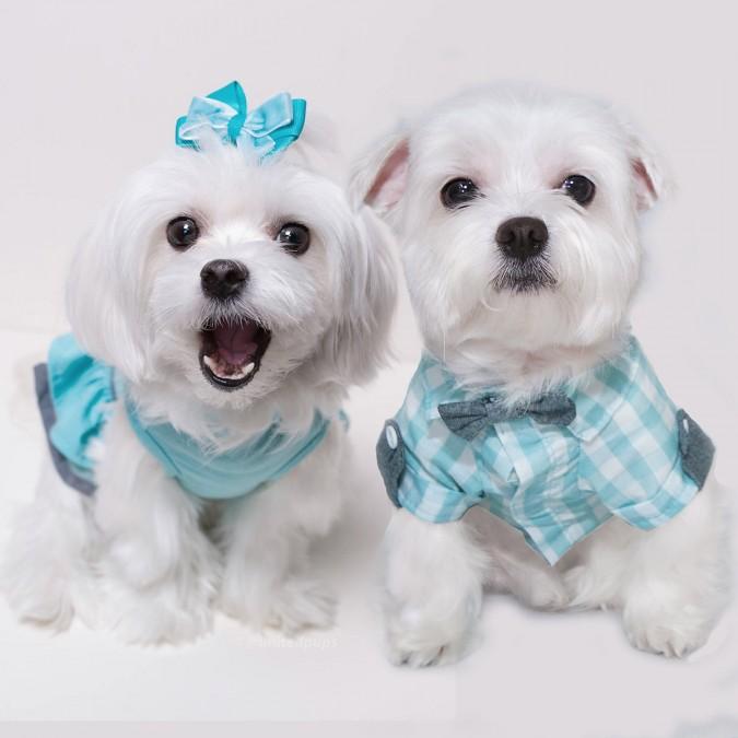 A-Rod&Bailey (2)