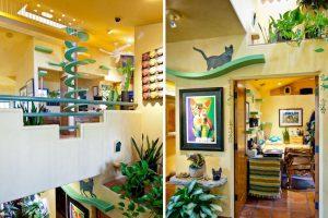 California-Cat-House-Boasts-Custom-Tunnels-Paths-5