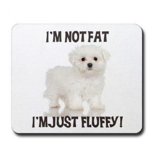 maltese_puppy_mousepad epress.com