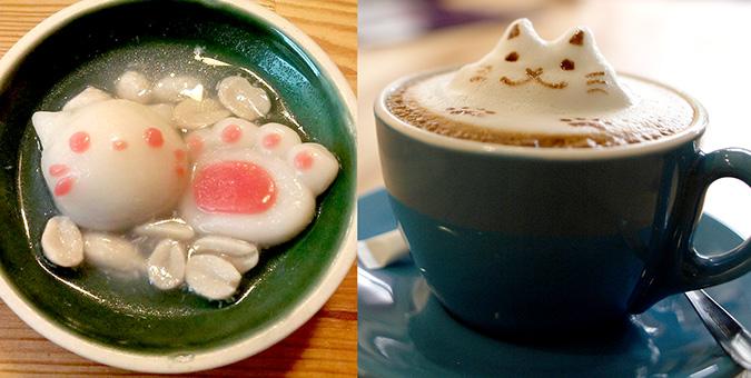 放鬆悠閒,貓奴專屬咖啡館-貓 旅行-71