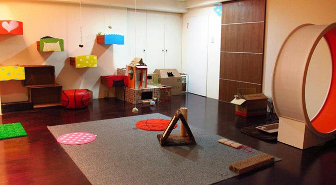 放鬆悠閒,貓奴專屬咖啡館-這裡有貓輕食屋-環境 (1)