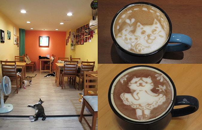 放鬆悠閒,貓奴專屬咖啡館-這裡有貓輕食屋-環境