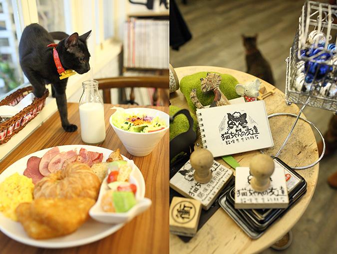 放鬆悠閒,貓奴專屬咖啡館-貓咪先生的朋友