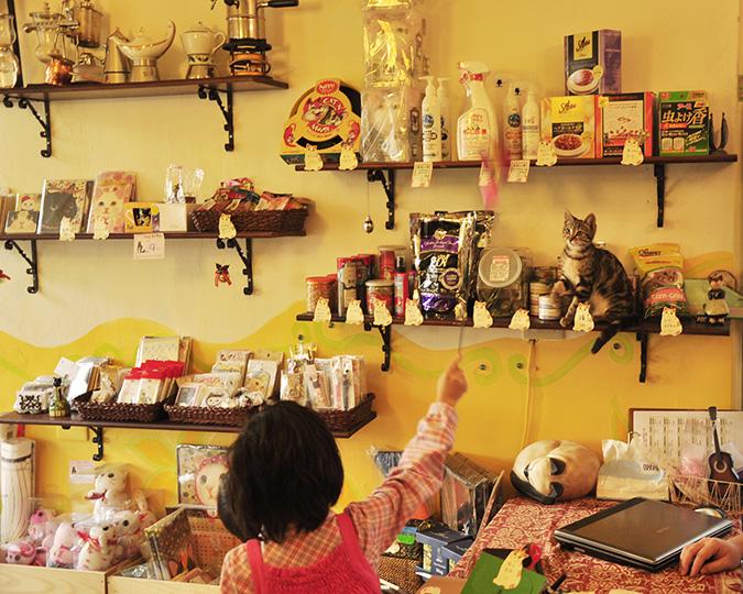 放鬆悠閒,貓奴專屬咖啡館-貓雜貨-貓雜貨區