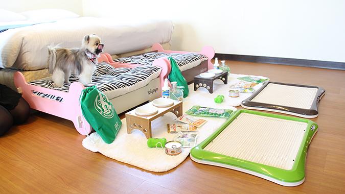 專屬寵物特殊服務-東森山林渡假酒店-2-3