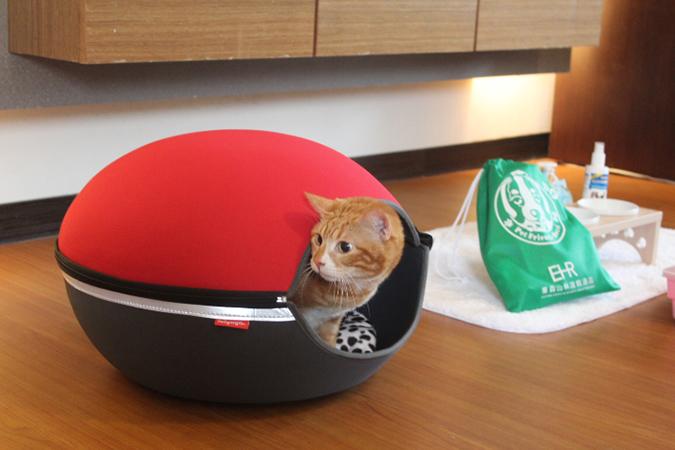 專屬寵物特殊服務-東森山林渡假酒店-2-1