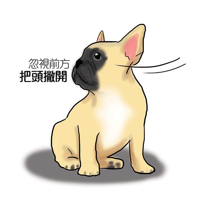 常見狗狗安定訊號-狗撇頭