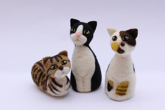 纖維所在-1-cats