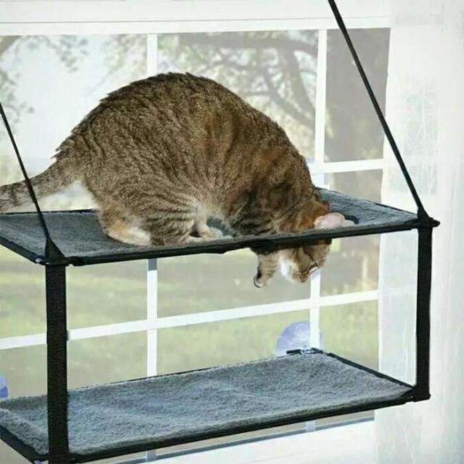 貓奴必拜搶手好物-K&H雙層貓看台