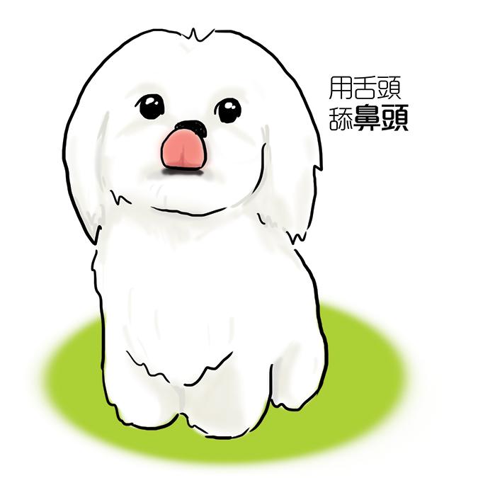 常見狗狗安定訊號-狗舔舌頭