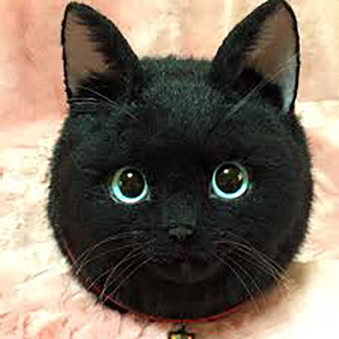 貓奴必拜搶手好物-超擬真貓咪包