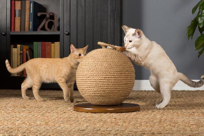 貓奴必拜搶手好物-Prevue 貓抓球-1