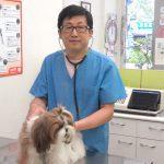 江佳淵醫師