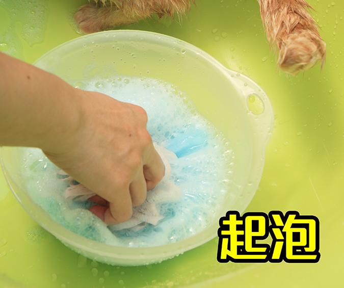 幫貓咪洗澡5-steps-341
