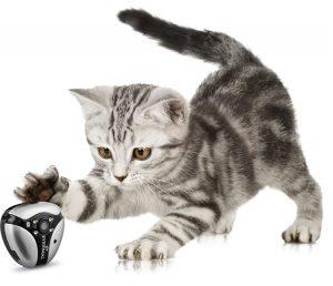 dogtek-eyenimal-cat-video-camera-2
