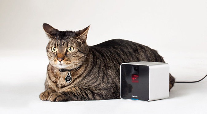 petcube-interactive-wi-fi-pet-camera-2