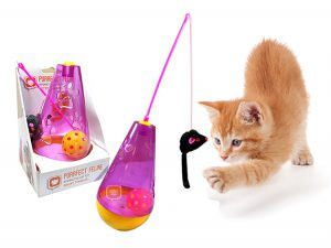 purrfect-feline-wacky-tumbler-2