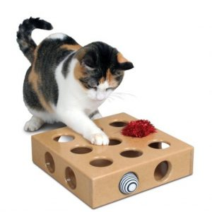 smartcat-peek-and-play-toy-box