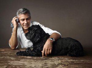 世界名人寵物-喬治克隆尼george-clooney5-2