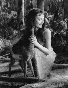 世界名人寵物-奧黛麗赫本audrey-hepburn7-3
