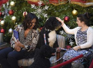 Michelle Obama, Luna Fera, Bo Obama