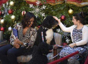 Michelle Obama, Luna Fera, Bo Obama