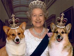 世界名人寵物-英國王室british-royal-family2-3