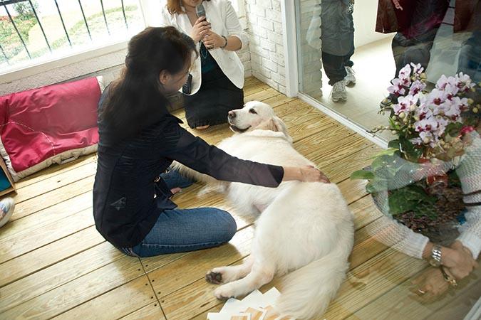 praise-touch幫寵物馬一節替感情增溫-001