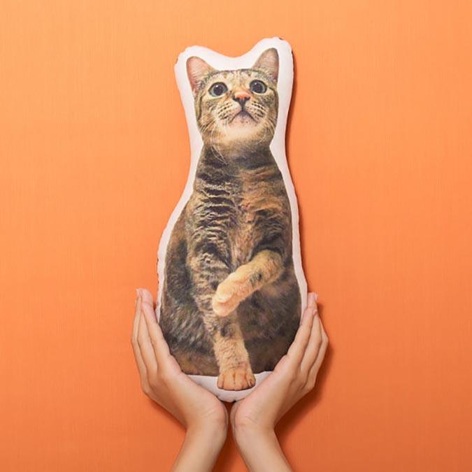 自己做不到的,設計師幫你做-pillowhug1