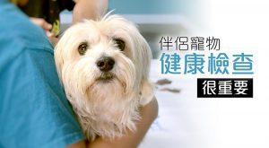 伴侶寵物健康檢查很重要675x372