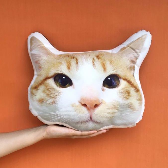 自己做不到的,設計師幫你做-pillowhug3