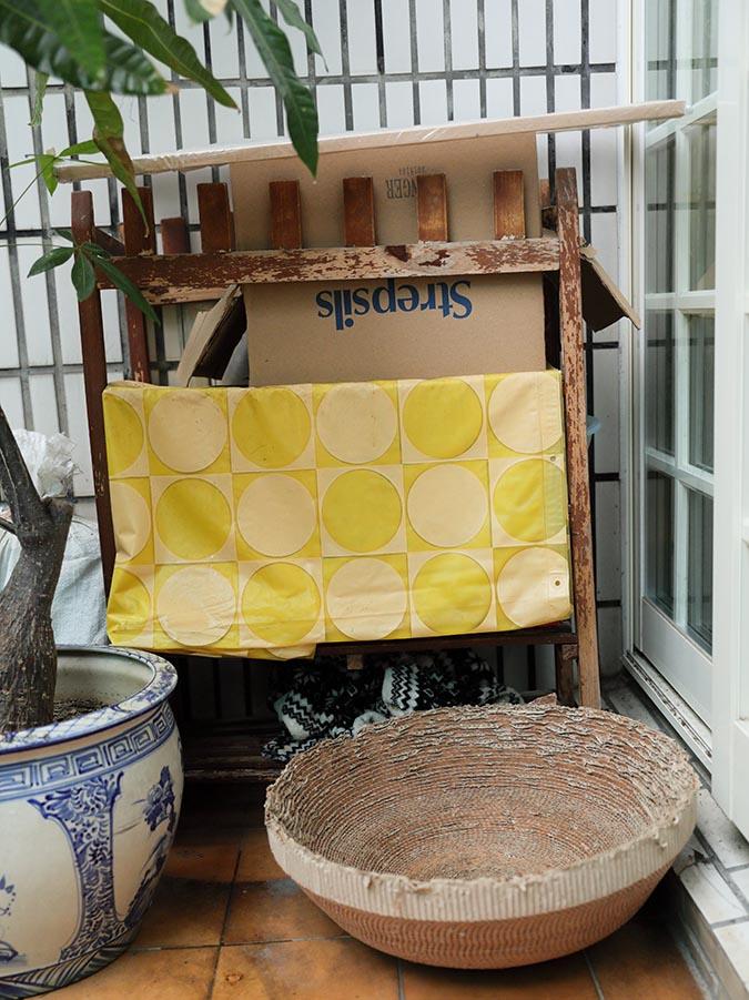 韓吉不只是個男子漢-吉媽為附近的街貓打造可以遮